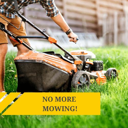 No More Mowing!