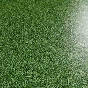 Grass Effect Cushioned Vinyl Flooring For Childrens Play Rooms And Residential Properties