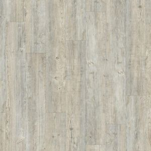 Moduleo Light Grey 24242 Latin Pine Rustic Design Glue Down Lvt Planks For Residential And Commercial Homes